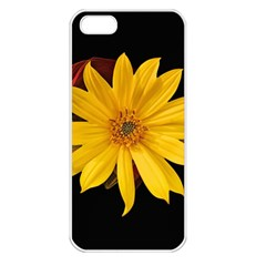 Sun Flower Blossom Bloom Particles Apple Iphone 5 Seamless Case (white) by Nexatart
