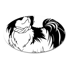 Animal Canine Dog Japanese Chin Oval Magnet