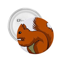Squirrel Animal Pet 2 25  Buttons