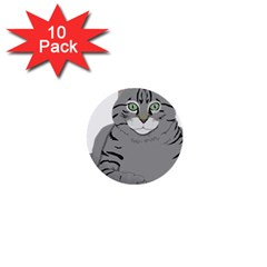 Cat Kitty Gray Tiger Tabby Pet 1  Mini Buttons (10 Pack)