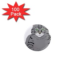 Cat Kitty Gray Tiger Tabby Pet 1  Mini Magnets (100 Pack)