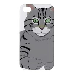 Cat Kitty Gray Tiger Tabby Pet Apple Iphone 4/4s Premium Hardshell Case by Sapixe