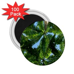 Paradise Under The Palms 2 25  Magnets (100 Pack)  by CrypticFragmentsColors