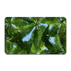 Paradise Under The Palms Magnet (rectangular) by CrypticFragmentsColors