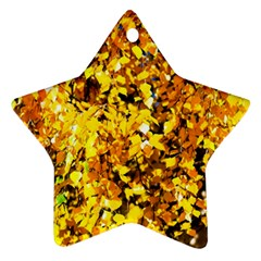 Birch Tree Yellow Leaves Ornament (star) by FunnyCow