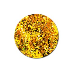 Birch Tree Yellow Leaves Magnet 3  (round) by FunnyCow