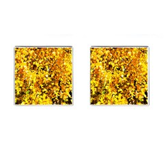 Birch Tree Yellow Leaves Cufflinks (square) by FunnyCow