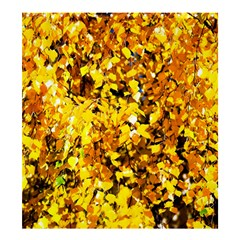 Birch Tree Yellow Leaves Shower Curtain 66  X 72  (large)  by FunnyCow