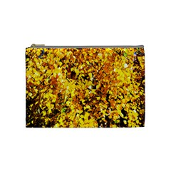 Birch Tree Yellow Leaves Cosmetic Bag (medium) by FunnyCow
