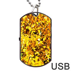 Birch Tree Yellow Leaves Dog Tag Usb Flash (two Sides) by FunnyCow