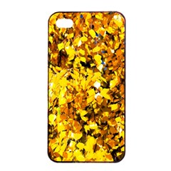 Birch Tree Yellow Leaves Apple Iphone 4/4s Seamless Case (black) by FunnyCow