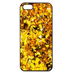 Birch Tree Yellow Leaves Apple Iphone 5 Seamless Case (black) by FunnyCow