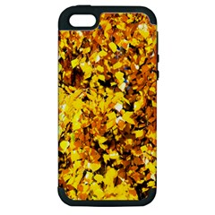 Birch Tree Yellow Leaves Apple Iphone 5 Hardshell Case (pc+silicone) by FunnyCow
