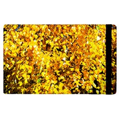 Birch Tree Yellow Leaves Apple Ipad 3/4 Flip Case by FunnyCow