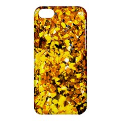 Birch Tree Yellow Leaves Apple Iphone 5c Hardshell Case by FunnyCow