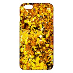 Birch Tree Yellow Leaves Iphone 6 Plus/6s Plus Tpu Case by FunnyCow