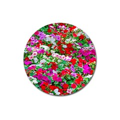 Colorful Petunia Flowers Magnet 3  (round) by FunnyCow