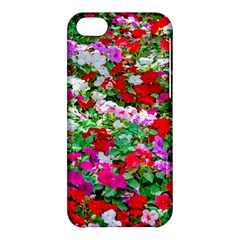 Colorful Petunia Flowers Apple Iphone 5c Hardshell Case by FunnyCow