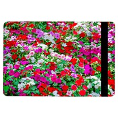 Colorful Petunia Flowers Ipad Air Flip by FunnyCow