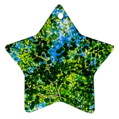 Forest   Strain Towards The Light Star Ornament (two Sides) by FunnyCow