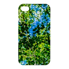 Forest   Strain Towards The Light Apple Iphone 4/4s Hardshell Case by FunnyCow