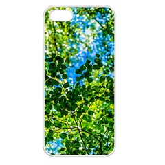 Forest   Strain Towards The Light Apple Iphone 5 Seamless Case (white) by FunnyCow