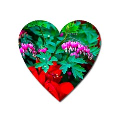 Bleeding Heart Flowers Heart Magnet by FunnyCow