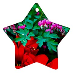 Bleeding Heart Flowers Star Ornament (two Sides) by FunnyCow