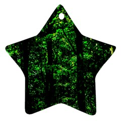 Emerald Forest Ornament (star) by FunnyCow
