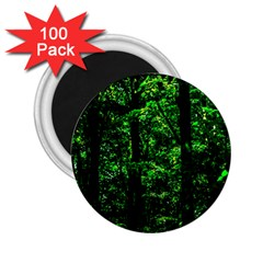 Emerald Forest 2 25  Magnets (100 Pack)  by FunnyCow