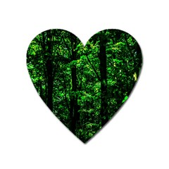 Emerald Forest Heart Magnet by FunnyCow