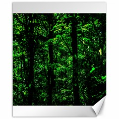 Emerald Forest Canvas 16  X 20   by FunnyCow