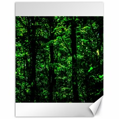 Emerald Forest Canvas 18  X 24   by FunnyCow