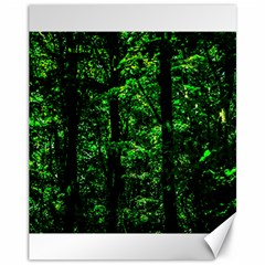 Emerald Forest Canvas 11  X 14   by FunnyCow