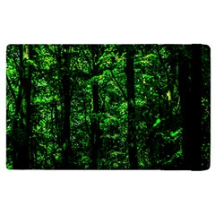 Emerald Forest Apple Ipad 3/4 Flip Case by FunnyCow