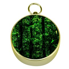 Emerald Forest Gold Compasses by FunnyCow
