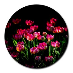 Pink Tulips Dark Background Round Mousepads by FunnyCow