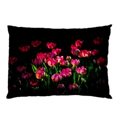 Pink Tulips Dark Background Pillow Case by FunnyCow