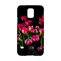 Pink Tulips Dark Background Samsung Galaxy S5 Hardshell Case  by FunnyCow