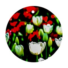 White And Red Sunlit Tulips Ornament (round) by FunnyCow