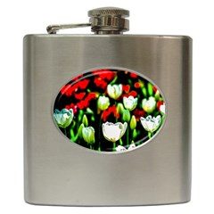 White And Red Sunlit Tulips Hip Flask (6 Oz) by FunnyCow