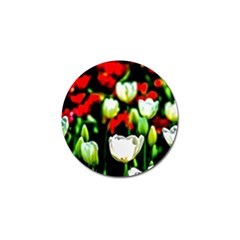 White And Red Sunlit Tulips Golf Ball Marker by FunnyCow