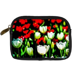 White And Red Sunlit Tulips Digital Camera Cases by FunnyCow