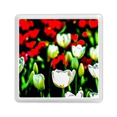 White And Red Sunlit Tulips Memory Card Reader (square) by FunnyCow
