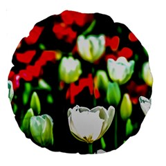 White And Red Sunlit Tulips Large 18  Premium Round Cushions by FunnyCow