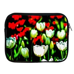 White And Red Sunlit Tulips Apple Ipad 2/3/4 Zipper Cases by FunnyCow