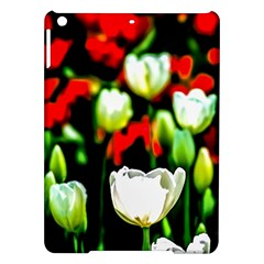 White And Red Sunlit Tulips Ipad Air Hardshell Cases by FunnyCow