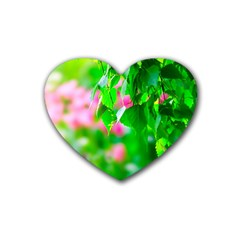 Green Birch Leaves, Pink Flowers Heart Coaster (4 Pack)  by FunnyCow