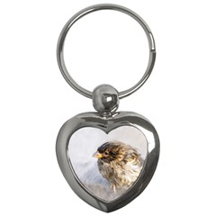 Funny Wet Sparrow Bird Key Chains (heart)  by FunnyCow