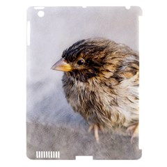 Funny Wet Sparrow Bird Apple Ipad 3/4 Hardshell Case (compatible With Smart Cover) by FunnyCow